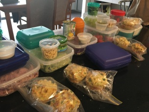 Lunches easy to refrigerate complete with fruit and muffin snacks.